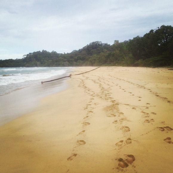 We left only footprints. Adieu, Wizard Beach.