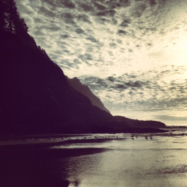 The beach at Heceta Head is amazing. Always a favorite spot of mine.